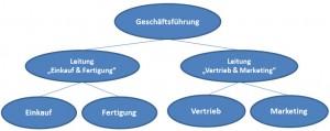 Einlinienorganisation-300x119 in Mehrliniensystem