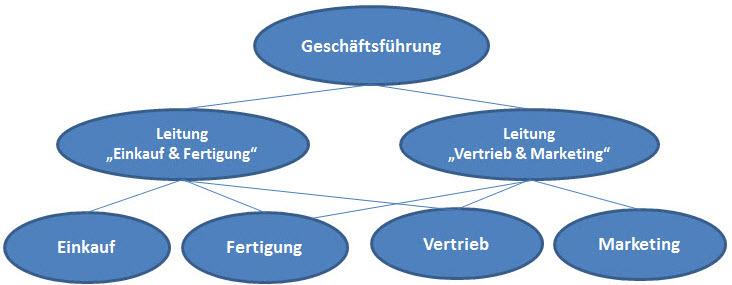 Mehrliniensystem Der Dualstudent